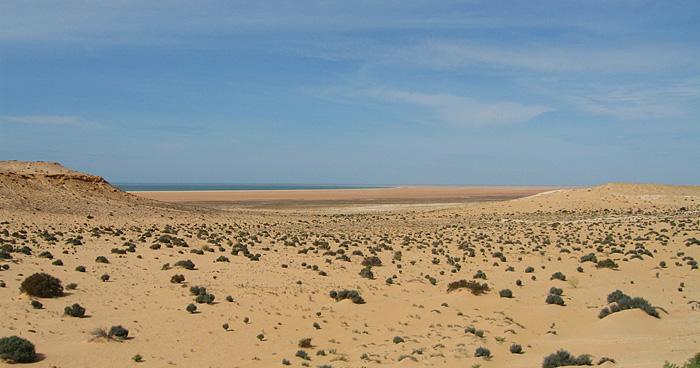 Западная пустыня Сахара и океан