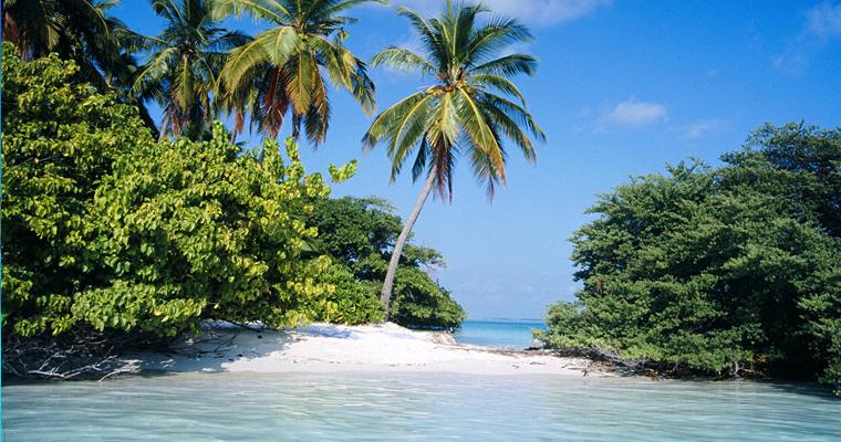 Тропический остров, Северный Мале-Атолл, Мальдивы