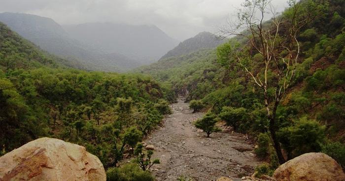 Горы, Джибути