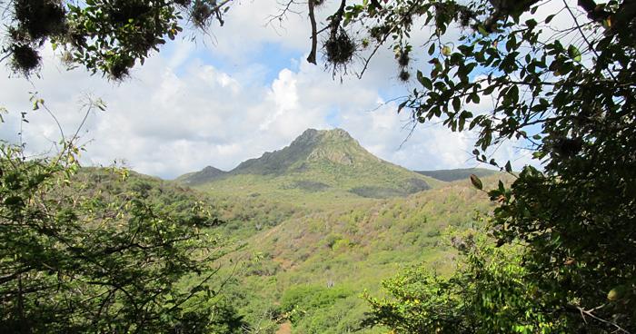 Национальный парк Кристоффель в Кюрасао