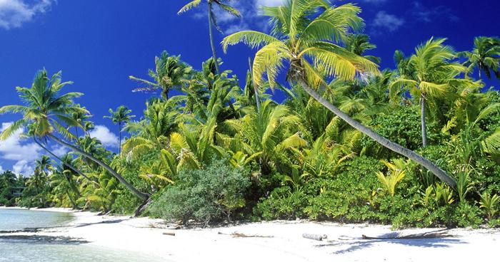 Палм-Бич, Соломоновы острова