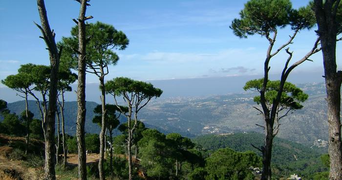 Природа, Ливан