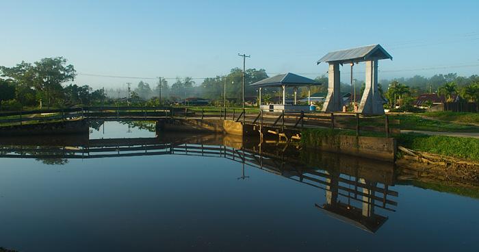 Альянс расположенный на берегу реки Суринам