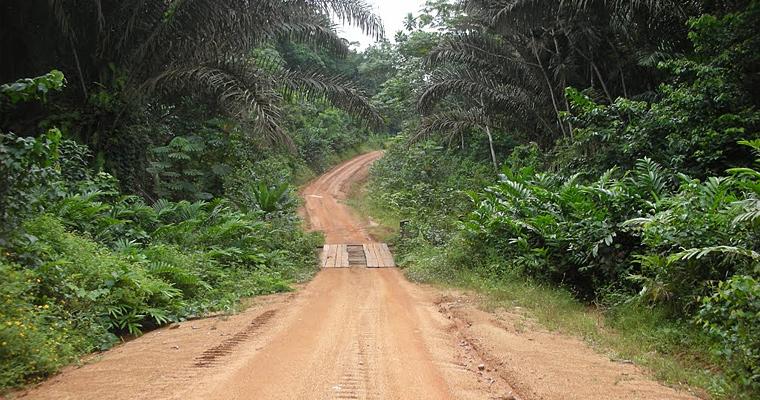 Дорога в джунглях, Нигерия