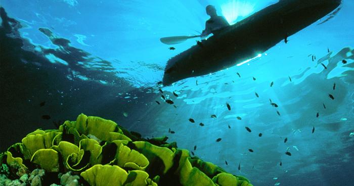 Рай для дайвинга, Соломоновы острова
