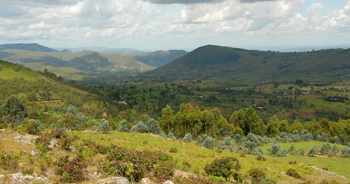 Дикая природа Бурунди