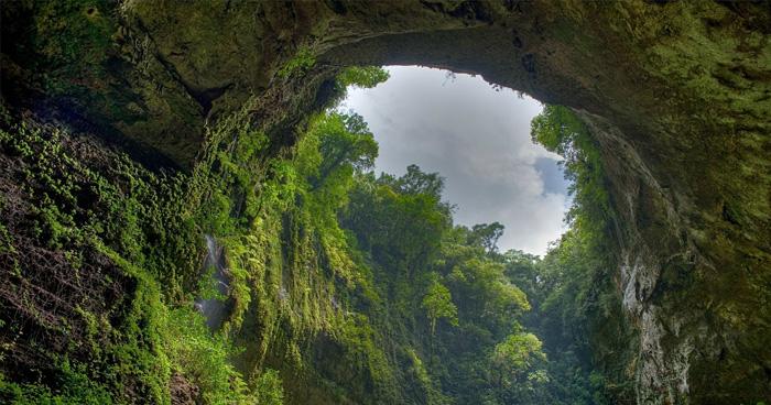 Природа, Пуэрто-Рико