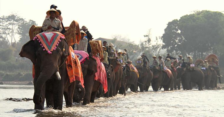 Основной вид транспорта (шутка). Ежегодный парад слонов в Лаосе.