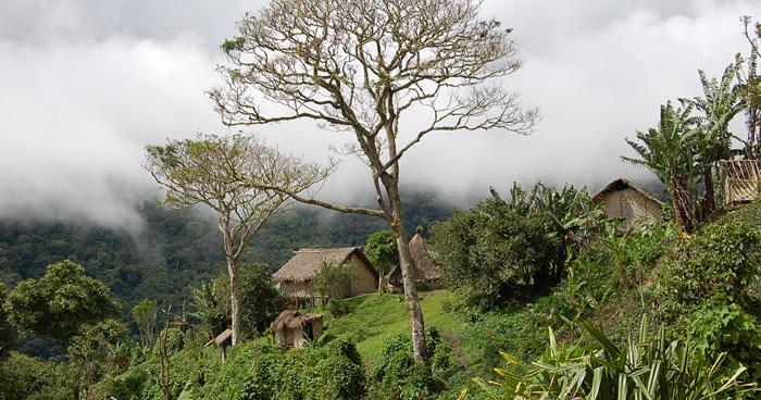 Деревня, Папуа - Новая Гвинея