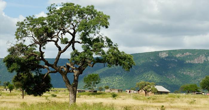 Деревня, Свазиленд