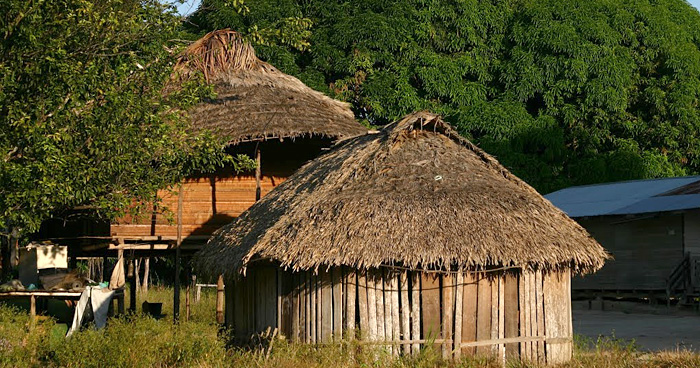 Palumeu, Сипаливини, Суринам