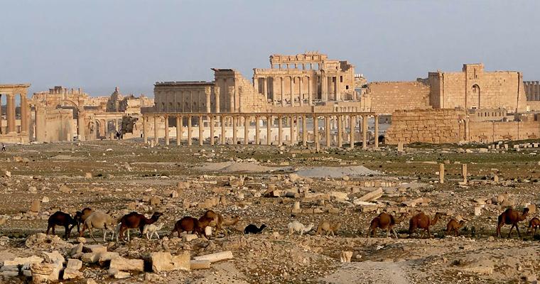 Сирийская пустыня Tadmur