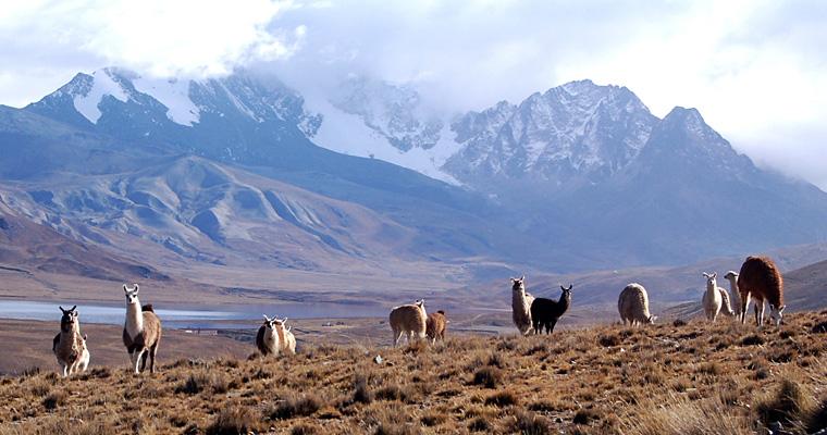 Лагуна Milluni и снежная Уайна Потоси, Боливия