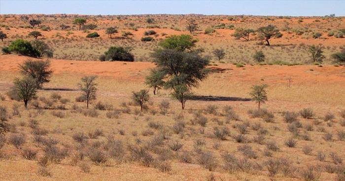 Калахари, Ботсвана