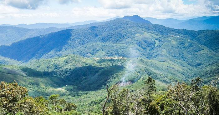 Природа, Папуа-Новая Гвинея