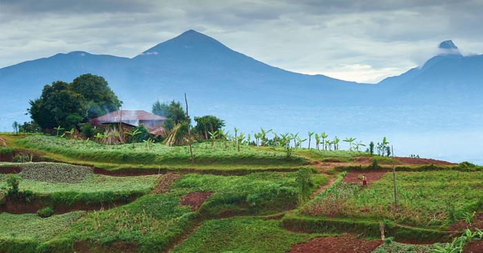 Ферма недалеко от Рухенгери в Руанде
