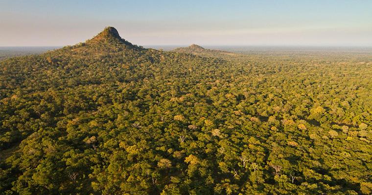 Национальный парк Gorongosa, Мозамбик