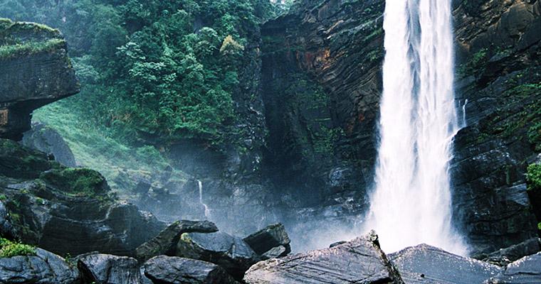 Шри-Ланка является раем для любителей природы