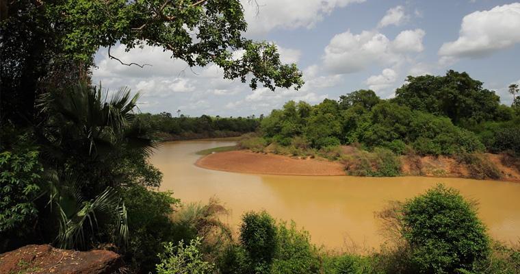 Национальный парк Буш Бак, Гамбия