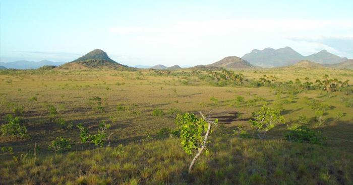 Рупунуни саванна, Гайана