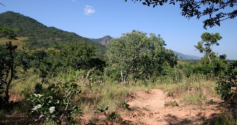 Национальный парк Ниика, Малави