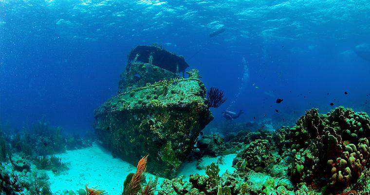 Подводный мир, Аруба.