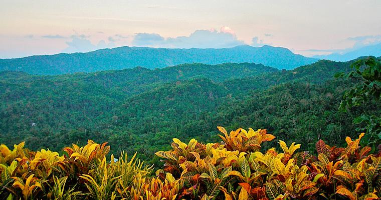 Голубые горы, Ямайка