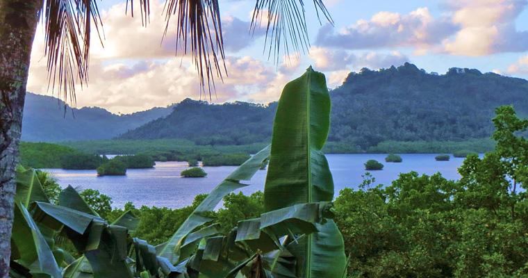 Природа, Микронезия