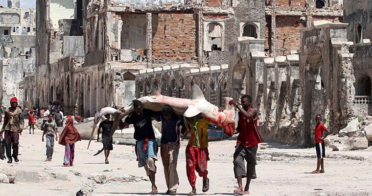 Доставка рыбы в Могадишо, Сомали