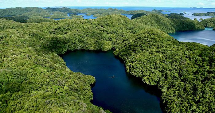 Озеро Медузы, Палау