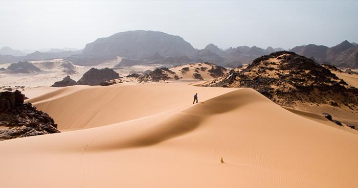 Сахара, Нигер