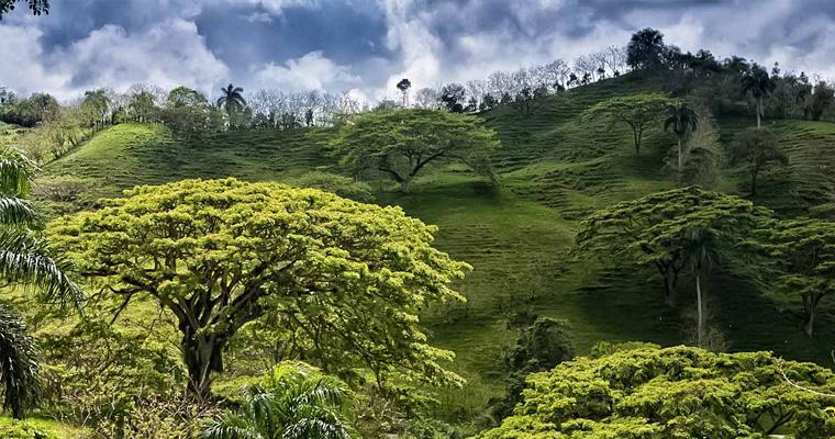 Limonal Villas, Доминиканская Республика