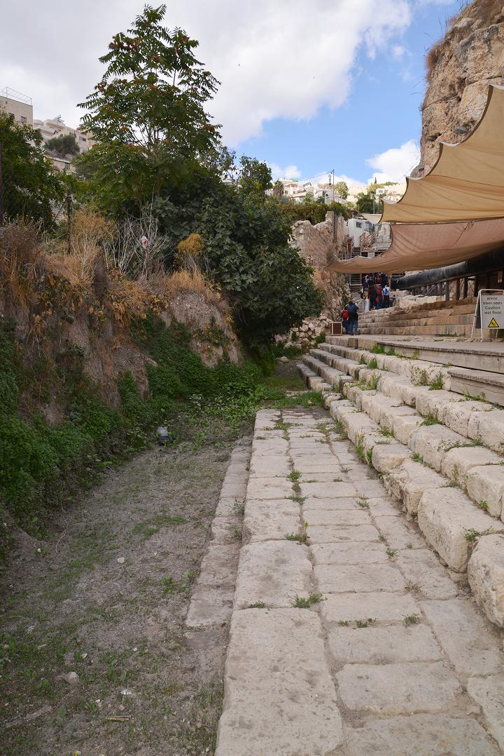 Смотровая площадка Beit Hatzofeh